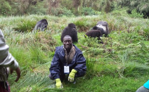 10 Days Rwanda Gorilla Safari tour Adventure