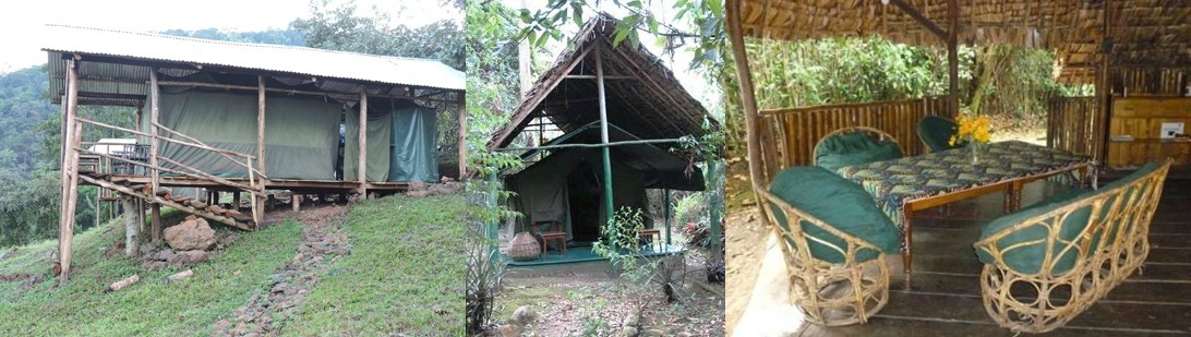 Gorilla Conservation Camp