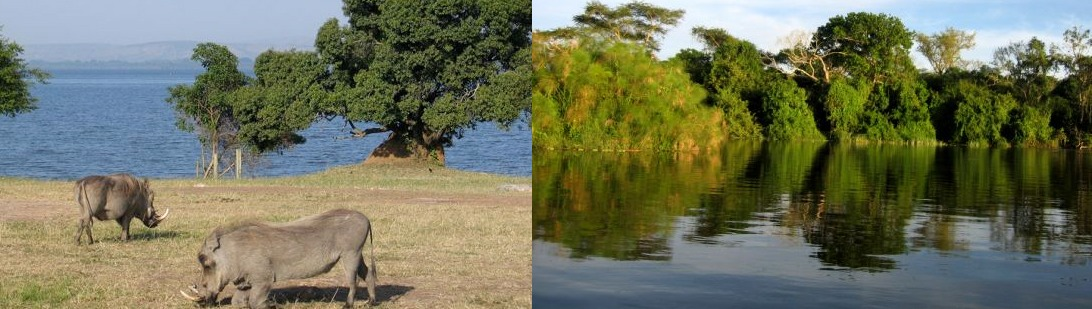 lake mburo