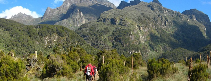 mountain-rwenzori-climbing-adventure