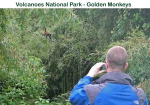 Other activities to undertake after a Rwanda Gorilla trekking safari-Rwanda safari news