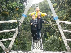 Canopy walk at Nyungwe forest national park