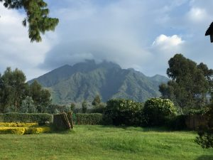Scenery of volcanoes national park rwanda