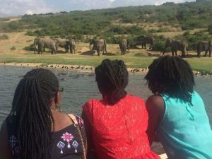12 days gorilla trekking safari Rwanda & wildlife tour in Uganda