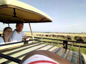 14 Days wildlife tour Rwanda gorilla trekking safari Uganda