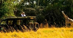 15 Days wildlife tour Rwanda gorilla trekking safari Uganda