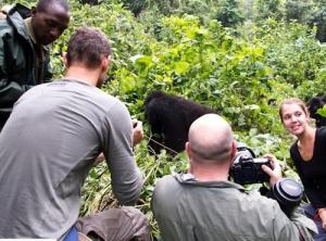 14 Days Gorilla Safari Rwanda Wildlife Tour Uganda