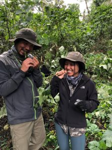 Best Time For a Rwanda Gorilla Trekking Safari - Rwanda Safari News